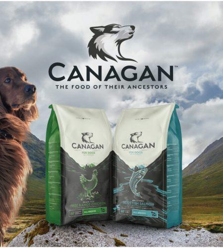 Canagan Partners Pets windows AW01